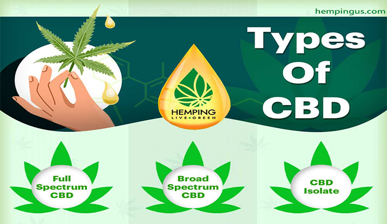 CBD Basics: All About CBD Oil #infographic