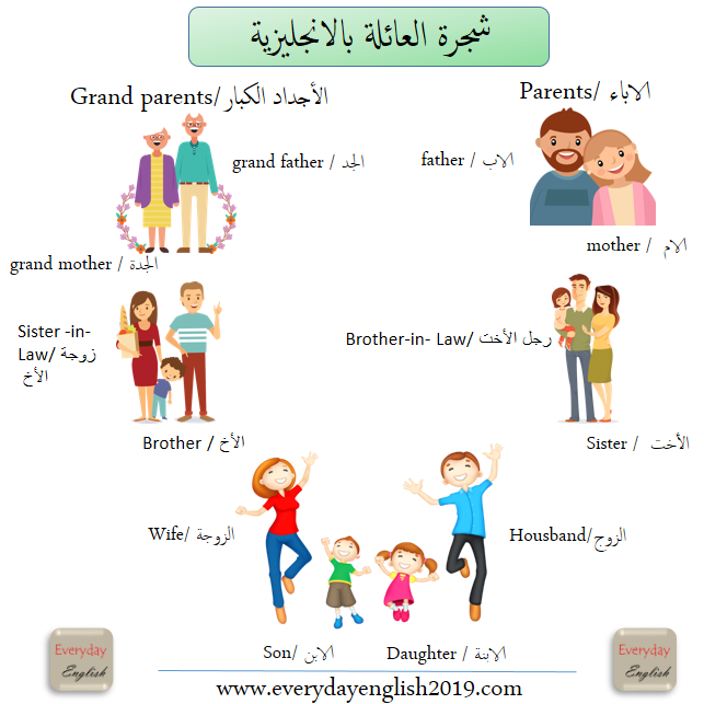 شجرة العائلة بالانجليزية مع صورة تعليمية عالمية مبسطة