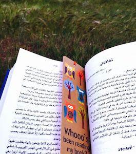 ملخص رواية عالم صوفي