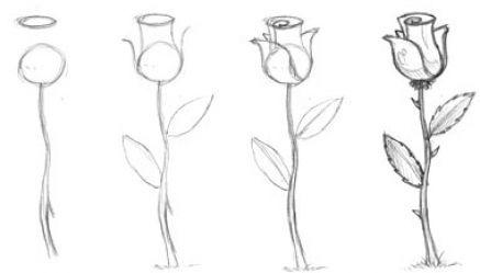 flores para calcar