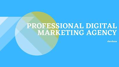 a professional digital marketing agency