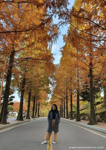 Things to Do in Daegu Keimyung University