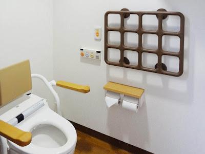 トイレの手すり『テスリックス』