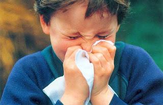 Γιατροσόφια της Ηπείρου για κρυολογήματα