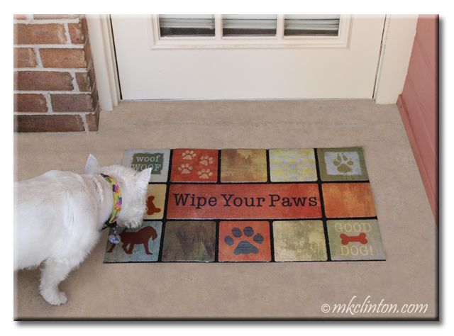 Beautiful doormat from Chewy.com