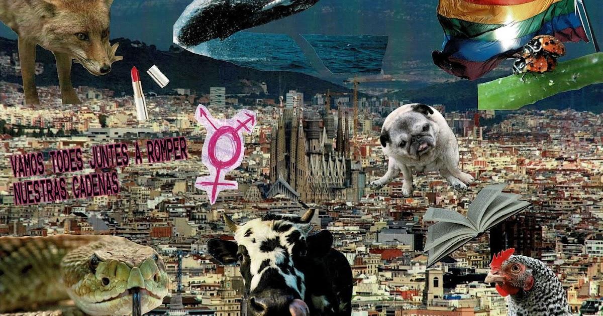 Parole De Queer La Revolucion De Las Vacas Gallinas Zorras