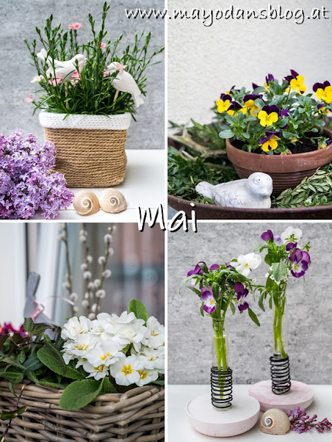 Blogrückblick im Mai
