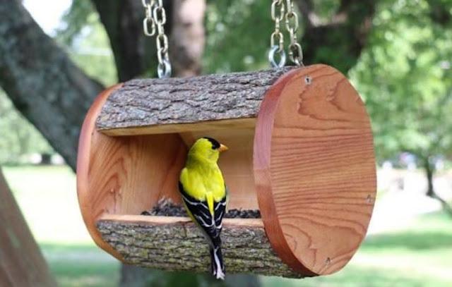 yard-bird-feeder-cedar
