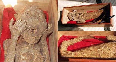 mumi putri duyung yang paling menyeramkan dan mengerikan di dunia-6