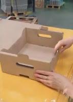 cajas para frutas y verduras automontables para 5 kg en formato abierto.