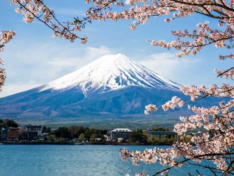 mount fuji,mt fuji,fuji,mt. fuji,mount fuji japan,mount fuji day tour,visit mount fuji,summit of mount fuji,mount fuji travel guide,visiting mount fuji,mt fuji travel,mount fuji place to visit,3 days in mount fuji,hike mount fuji,climb mount fuji,tokyo mount fuji,car to mount fuji,tokyo to mount fuji,how to visit mt fuji,best views of mount fuji,mount fuji lake,mount fuji song,visit japan