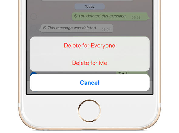 Fitur Delete For Everyone WhatsApp Terbaru