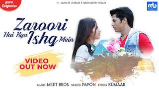 Zaroori Hai Kya Ishq Mein Song Lyrics - Meet Bros