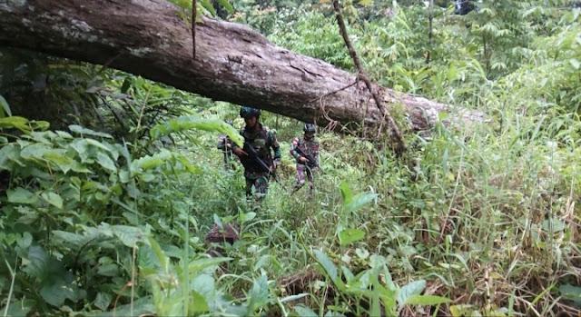 Warga Papua Banyak yang Miliki Kebun Dalam Hutan, Ini Aksi Yonif Raider 300
