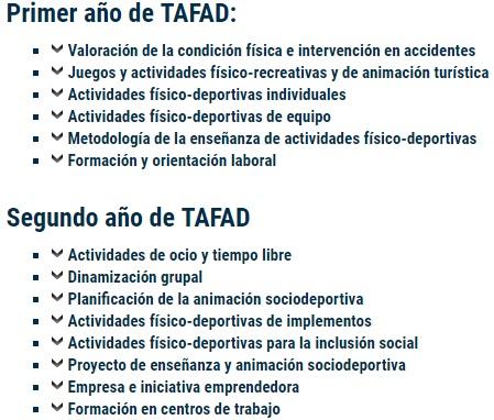 El Blogs De Laura Tafad Y Ciclo De Automoción