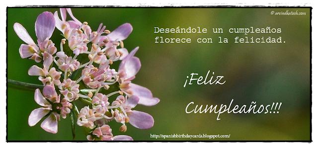 Tarjeta de Cumpleaños, Deseándole, florece, felicidad,