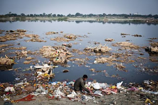 Water pollution essay for students