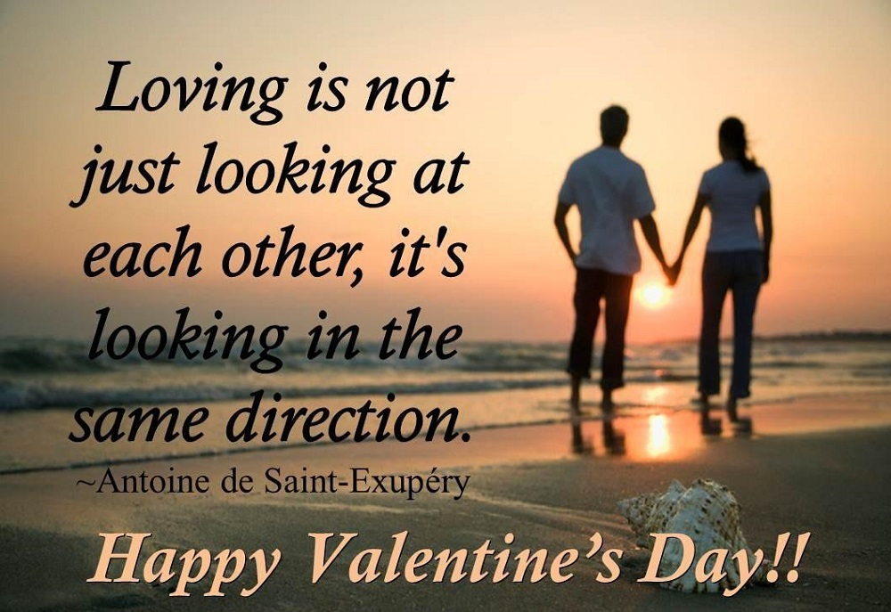 Valentines Day Quotes For Girlfriend Stunning Valentine Day 2018 Sms In Hindi For Girlfriend  Happy Valentines