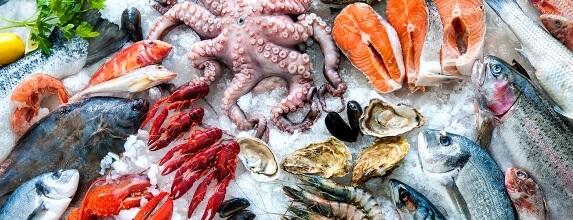 makanan laut untuk ibu mengandung