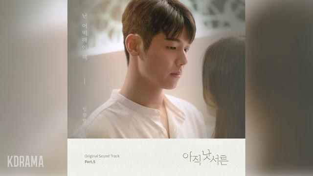 Lirik lagu Onestar What Should I Do OST How to Be Thirty Part 5 dan Terjemahan