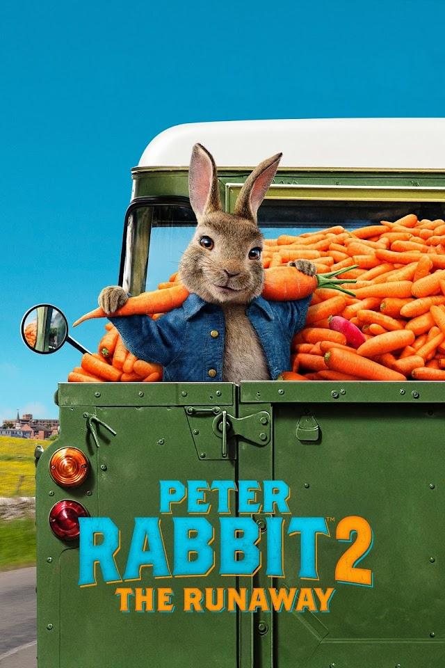 Peter Rabbit 2- The Runaway 2021 x264 720p Esub BluRay Dual Audio English Hindi THE GOPI SAHI