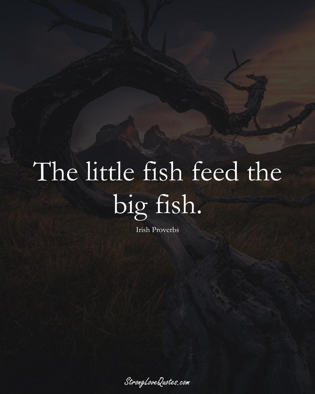 The little fish feed the big fish. (Irish Sayings);  #EuropeanSayings
