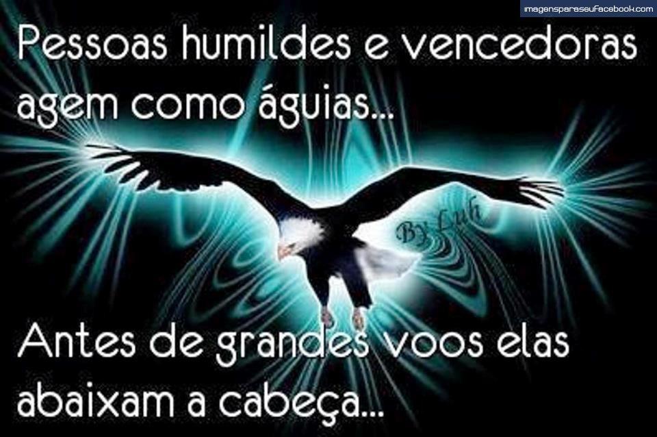 Frases Bonitas Com Imagens Para Compartilhar No Facebook