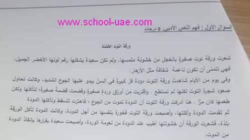 الامتحان الوزارى التكوينى الأول  لغة عربية الصف  الثانى الفصل الثانى2020 الامارات