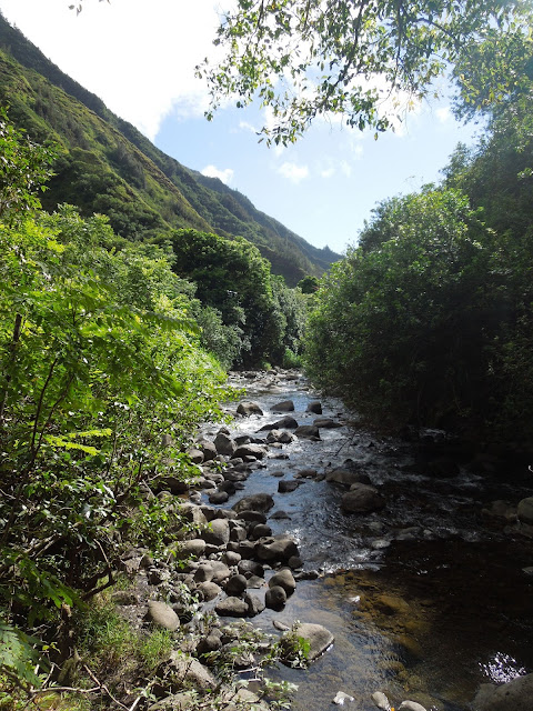 mountain and stream