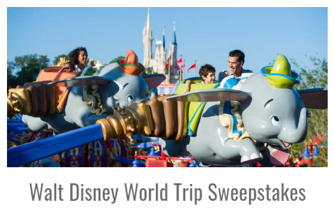 Inside the Magic has teamed up with Academy Travel and Mickey Vacations and they are giving away a week long trip of a lifetime to Walt Disney World!