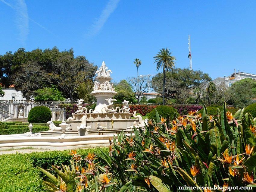 Ботанический сад Ажуда | Ландшафтный дизайн садов и парков | 637x850