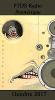 http://blog.mangaconseil.com/2017/11/paru-usa-numerique-ptsd-radio-en.html