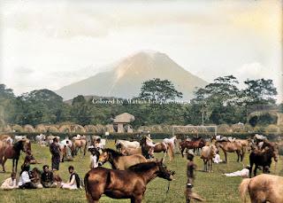 pameran kuda di kabanjahe