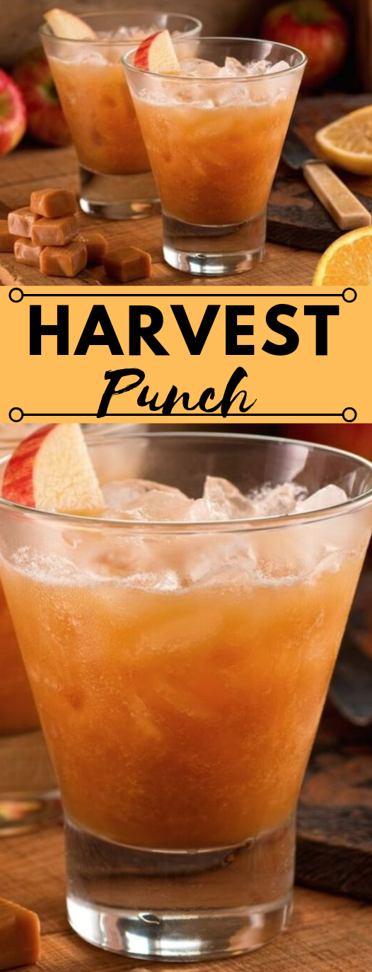 The BEST Fall Punch Recipe For Parties #hotdrink #healthydrink #fresh #puch #cocktail