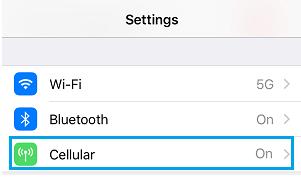 Cara Mudah Melacak Penggunaan Data Seluler di iPhone 2