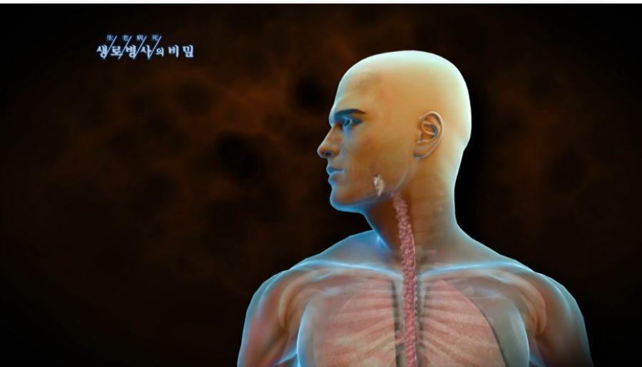 삼겹살 20년 동안 매일 먹은 사람의 몸 상태