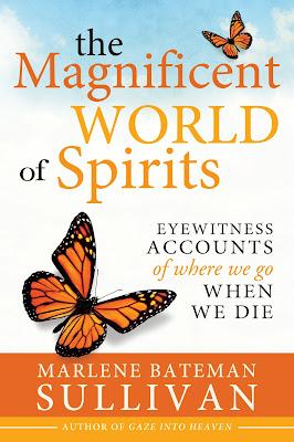 The Magnificent World of Spirits by Marlene Bateman Sullivan