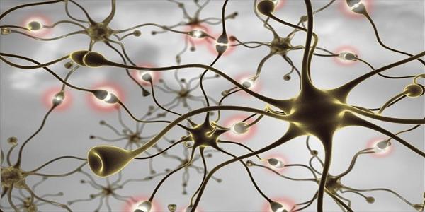 Πρωτοποριακή μέθοδος για τη μελέτη νευροεκφυλιστικών νόσων