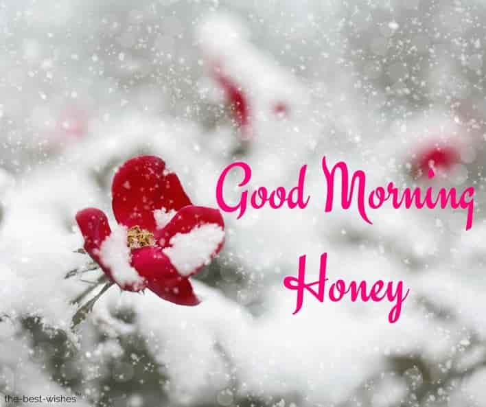 good morning honey hd images
