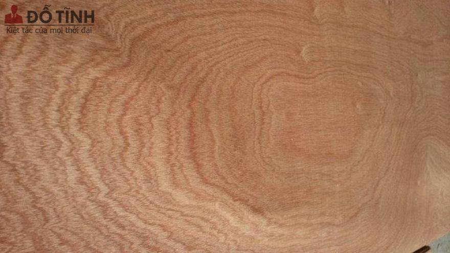Vân gỗ cắt ngang - Ảnh: Internet