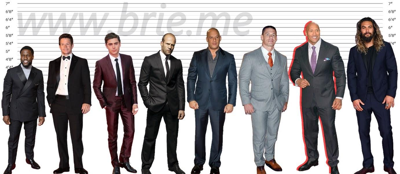 Kevin Hart, Mark Wahlberg, Zac Efron, Jason Statham, Vin Diesel, John Cena, The Rock, and Jason Momoa height comparison