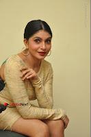 Actress Pooja Roshan Stills in Golden Short Dress at Box Movie Audio Launch  0097.JPG