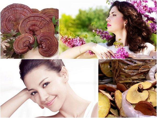 tác dụng của nấm linh chi đối với phụ nữ