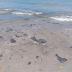 Com óleo e esgoto, parte do litoral do Nordeste enfrenta dupla poluição
