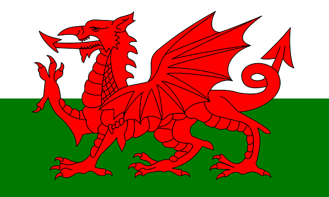 Welsh flag with the Welsh Dragon/Y DDraig Goch