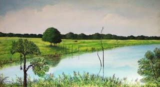 belleza-inestimable-de-entornos-naturales panoramas-entornos-naturales