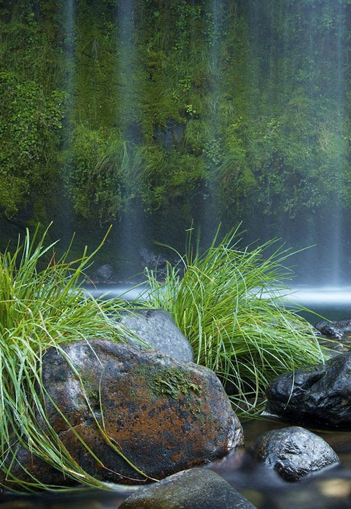 Travelers Feed: Mossbrae Falls*