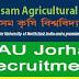 Senior Project Associate | Assam Agriculture University - Jorhat, Assam
