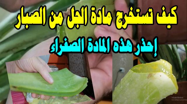 طريقة استخراج جل الصبار .جل الألوفيرا من قلب الصبار - فوائد صبار الالوفيرا  gel aloe vera- How to Use Aloe Vera Plant