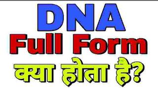 DNA Full Form in Hindi Medical Translation